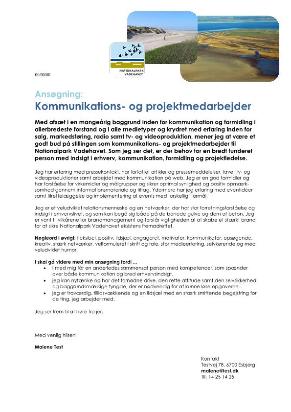 2-Kommunikations-_og_projektmedarbejder