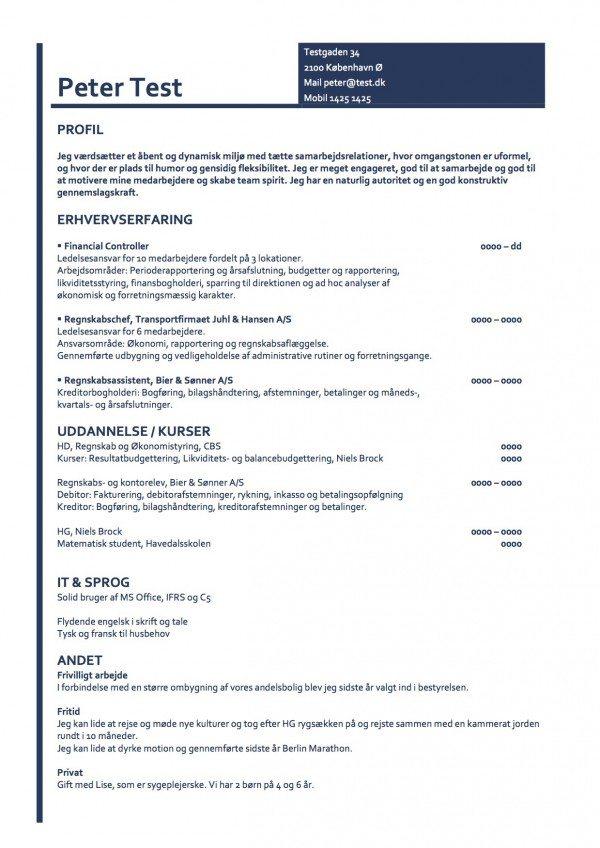 Layout - kronologisk CV - blå