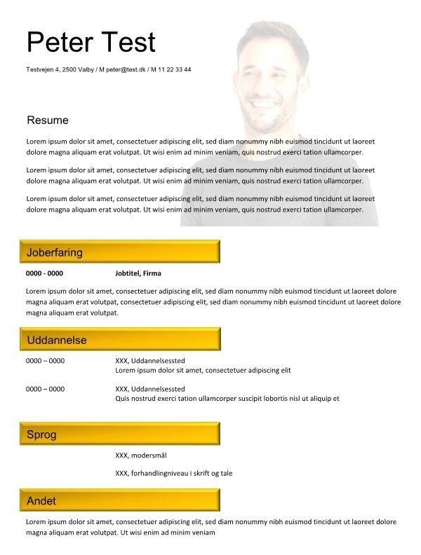 cv skabelon med resume og kernekompetencer - violet