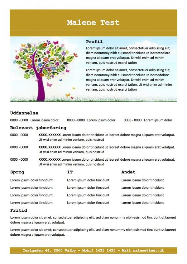 CV skabelon med profil