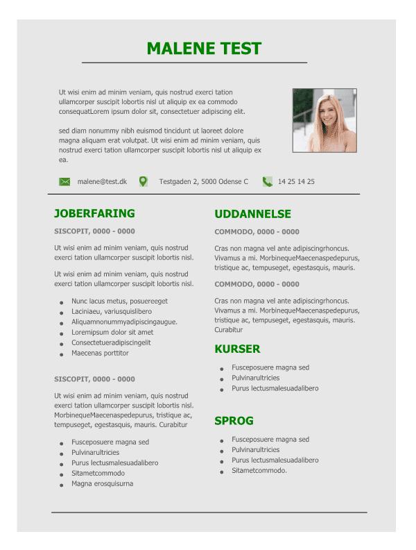 2-CV med graa baggrund - tekstbokse