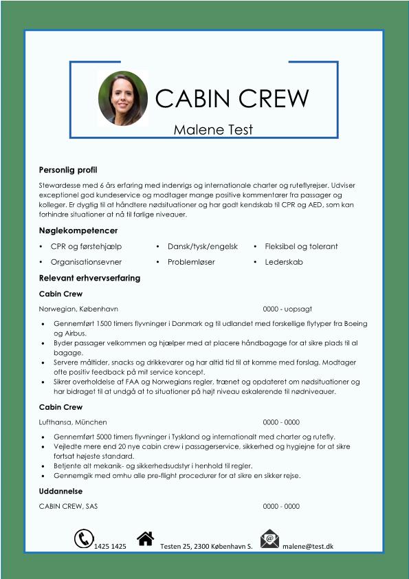 2-Cabin Crew