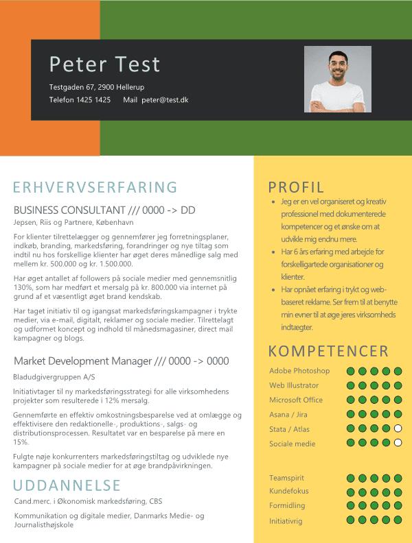 CV - Business Consultant