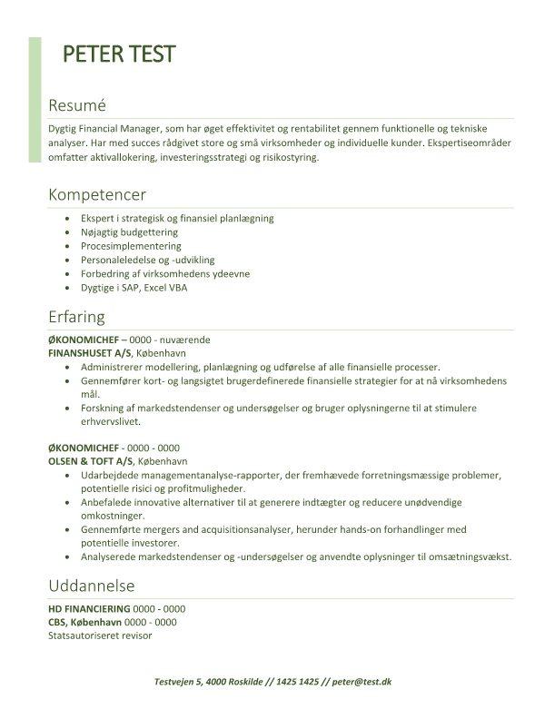 2 - CV Financial Manager