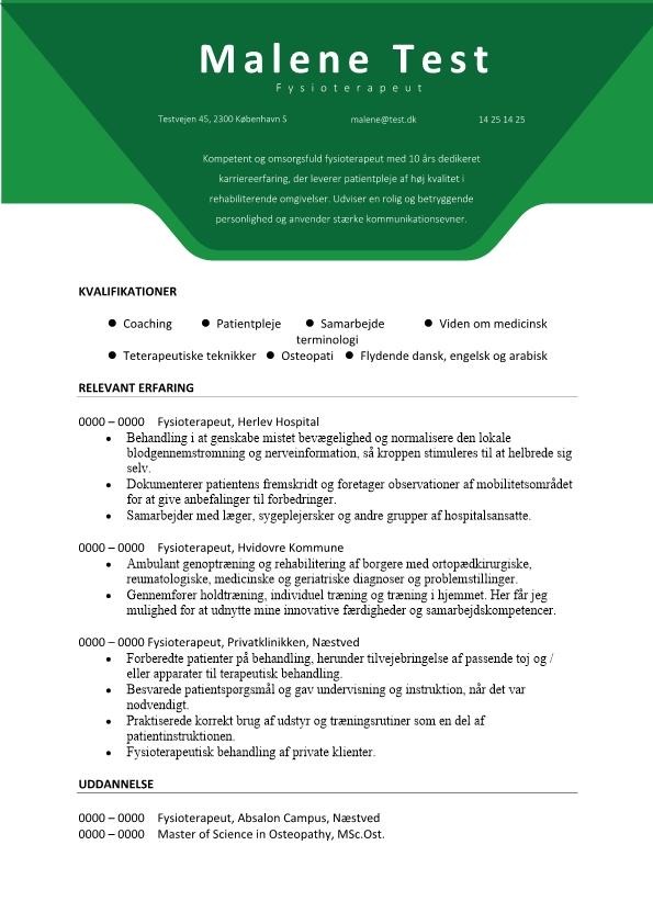 2- CV Fysioterapeut