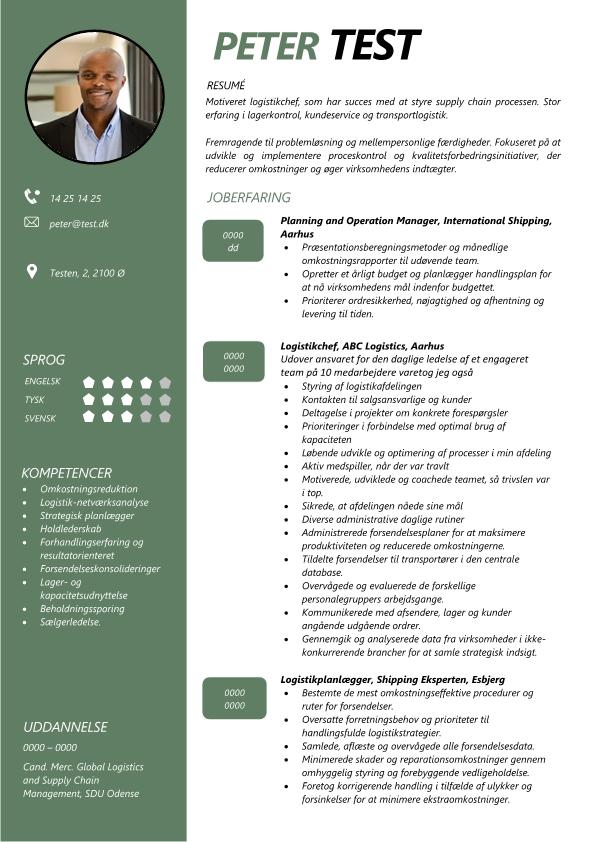 2 - CV Logistikchef