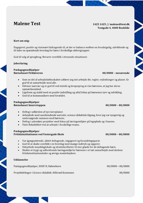 2 - CV Pædagogmedhjælper - erfaring fra børnehave