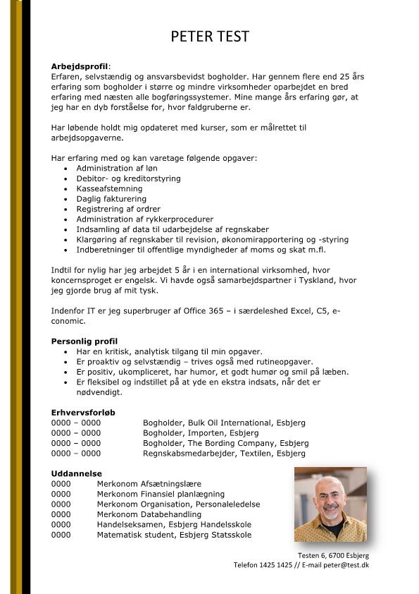 2 - CV Bogholder