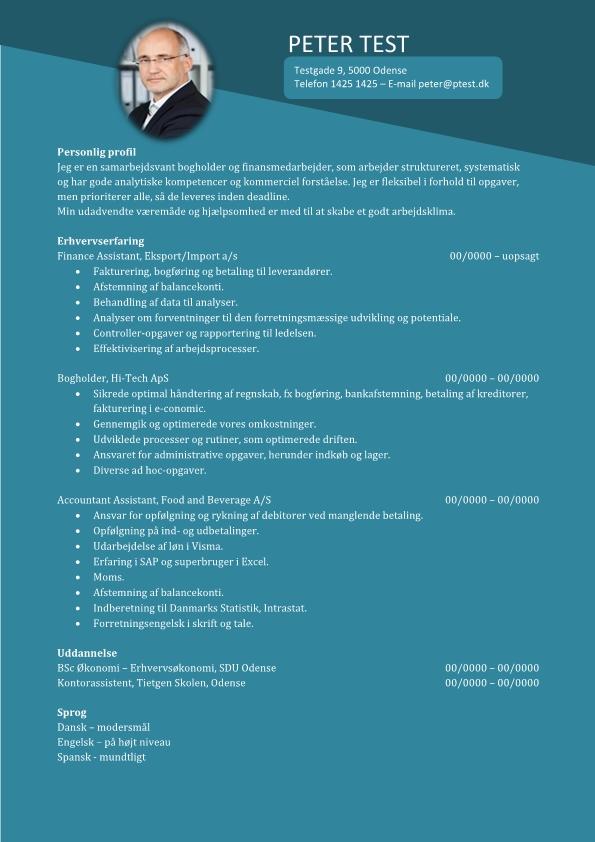 2- CV Finance Assistant