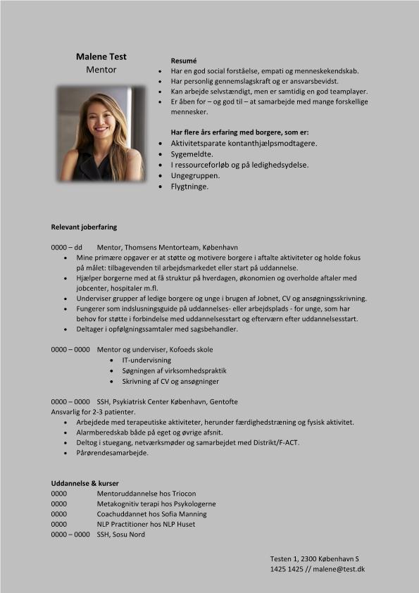 2 - CV Mentor