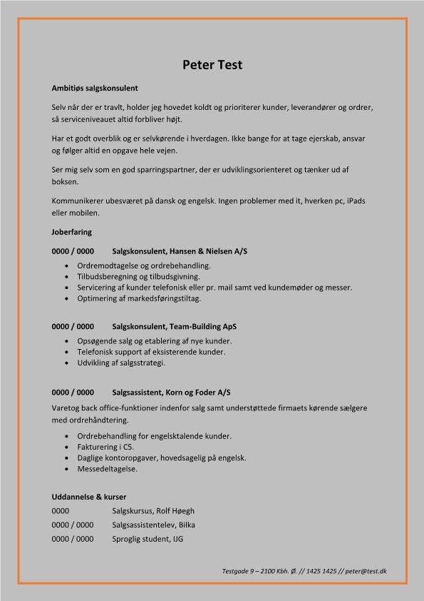 2 - CV Salgskonsulent