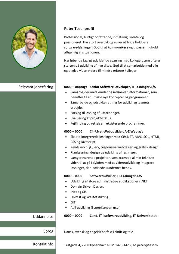 2 - CV Senior Software Developer