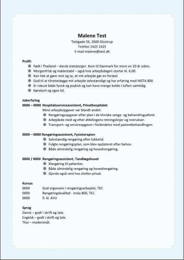 2 - CV rengøringsassistent