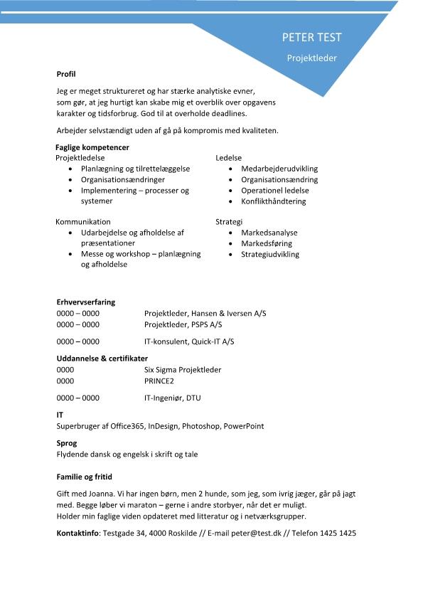 2 - CV Projektleder - IT Ingeniør